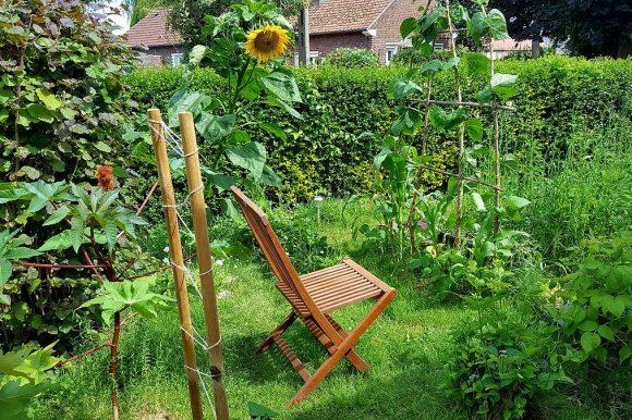 Cet automne, un MOOC sur la permaculture !